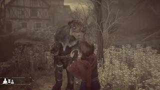 A Plague Tale: Innocence - Botanist Trophy - All Hugo's Herbarium Flower Collectible Locations