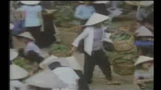 History Of Vietnam My Lai Massacre