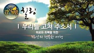 2014 한소망교회 감사특밤-자녀의 권세 (김동호 목사)