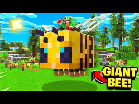 RIDING THE WORLD'S BIGGEST BEE!