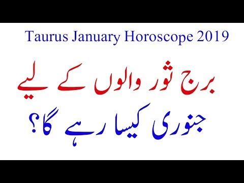 Taurus February Monthly Horoscope 2019|Taurus February 2019
