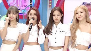 We Almost Died Waiting For This Group To Be Back! [SBS Inkigayo Ep 998]