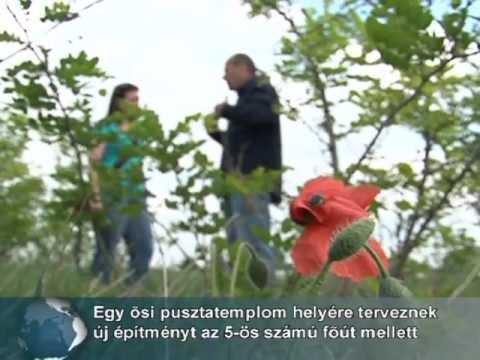 Madagaszkár lány keresi férfi