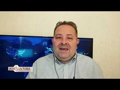 Video cu strategii de opțiuni binare simple