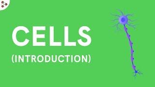 Cells - Introduction | Biology | Don't Memorise