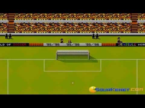 International Sensible Soccer : World Champions PC