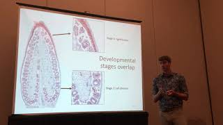 Alex Rajewski: Identification of Conserved Regulatory Modules in Dry and Fleshy Fruit Development