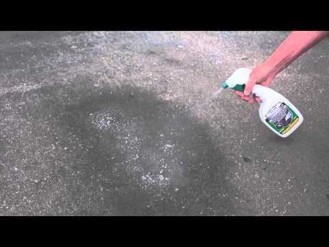 Les syndromes de la contamination par les helminthes