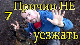 7 причин НЕ уезжать из России