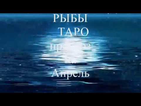 Гороскоп 24 октября 1986 год