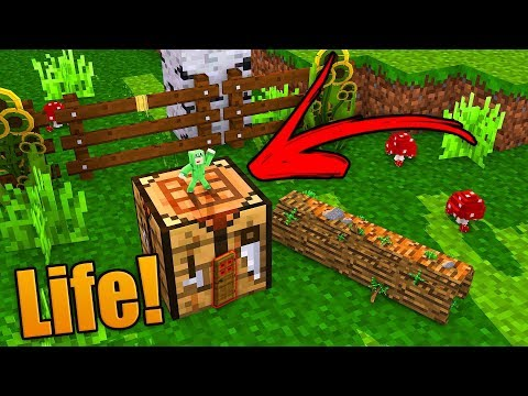 HOW TO LIVE INSIDE A CRAFTING TABLE!