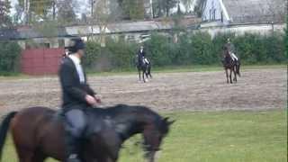preview picture of video '20111022_H U B E R T U S--Stado Ogierów BOGUSŁAWICE'