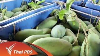 ทุกทิศทั่วไทย - ประเด็นข่าว (25 ก.พ. 59)