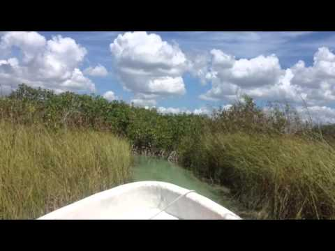 Beautiful boat trip on the Yucatan below Tulum Mexico