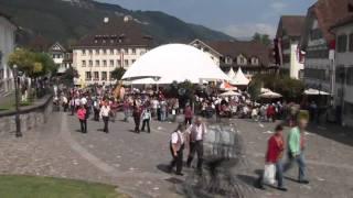 preview picture of video 'Eidgenössisches Ländlermusikfest 2007 in Stans'