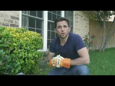 Stihl HSA 56 Trimmer Review - Texas Home Improvement