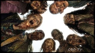 Walking Dead | Based on a True Story | Divided States of Zombieland ▶️️