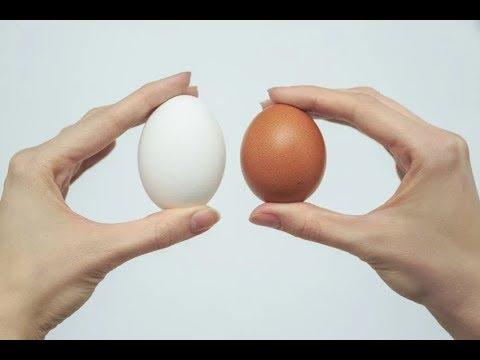 Яйца cколько можно есть каждый день взрослому и ребенку. Что будет если есть много яиц. Польза Вред.