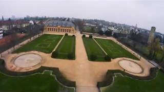 Little flight through an orangery | FPV | Cinematic