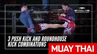 Muay Thai | Sam-A Gaiyanghadao's 3 Push Kick And Roundhouse Kick Combinations | Evolve University