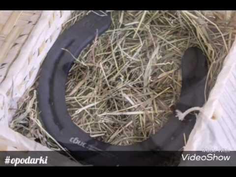 Вероника. потерянное счастье трейлер на русском