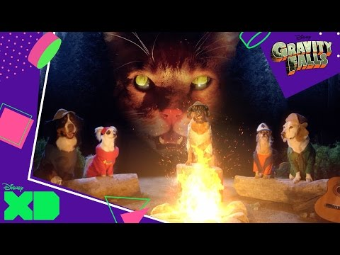 Gravity Falls | Gravity Paws | Official Disney XD UK