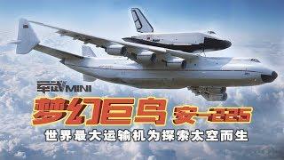 【军武MINI】飞机驼飞机:失落的巨鸟 ---- 安225