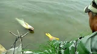 Летняя рыбалка на озерах в алтайском крае