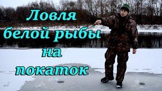 Ловля белой рыбы на покаток