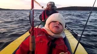 Рыбалка на ковдозере мурманская область