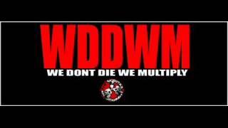 187 MOBSTAZ - WE DONT DIE WE MULTIPLY (WDDWM)