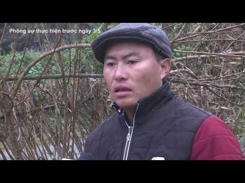 Vai trò của khuyến nông viên cơ sở trên địa bàn huyện Si Ma Cai