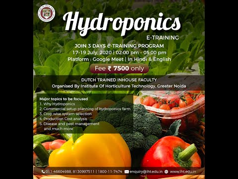 Hydroponics E-Training by Dutch Trained Faculty | Institute of ...