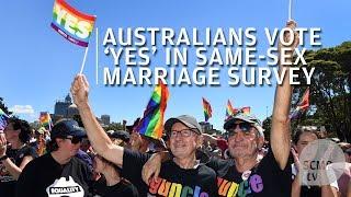 Igent mondtak az ausztrálok a melegházasság legalizálására!