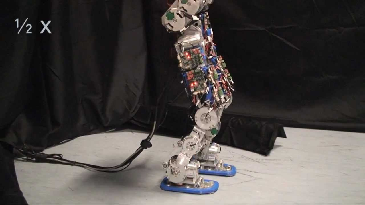 Compliant humanoid robot COMAN learns to walk efficiently by varying the center-of-mass height learned by reinforcement learning. The optimized walking gait achieves 18% reduction of the energy consumption.