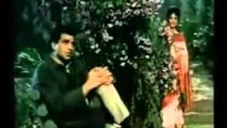 Mehbooba Teri Tasveer - Ishq Par Zor Nahin (1970) - YouTube