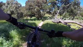 Fort Ord National Monument - Trail 42 - Trail 44 - Trail 41 (Goat Trail)