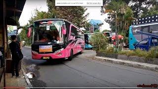 Parade Klakson TELOLET ala ROMBONGAN 13 Bus SUBUR JAYA - Jetbus 2+ SHD