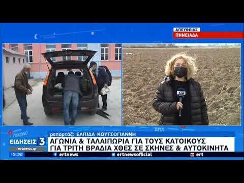 Θεσσαλία   Μεγάλα τα προβλήματα απο τις σεισμικές δονήσεις   06/03/2021   ΕΡΤ