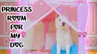 MAKING MY DOG A PRINCESS ROOM!