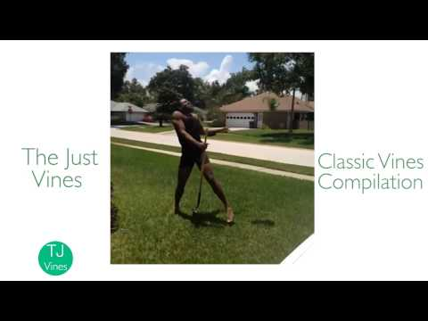 CLASSIC VINES COMPILATION - Best of the
