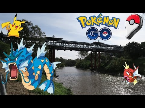 Video Pokemon GO in Real Life | BEST PLACE TO GET GYARADOS