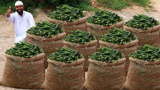 Ever Green Lady Finger Masala Recipe   Bhindi Masala Curry   Nawabs kitchen