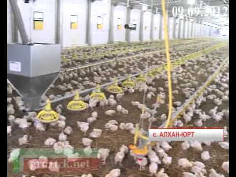 Выпуск Новости 7 от 9 сентября 2012 года