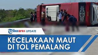 Kecelakaan Maut Bus AKAP di Tol Pejagan-Pemalang, Korban Bergelimpangan di Pinggir Jalan
