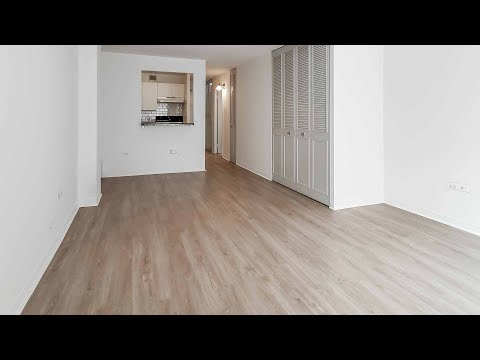 An updated E-tier studio in Lakeview East at 441 W Oakdale