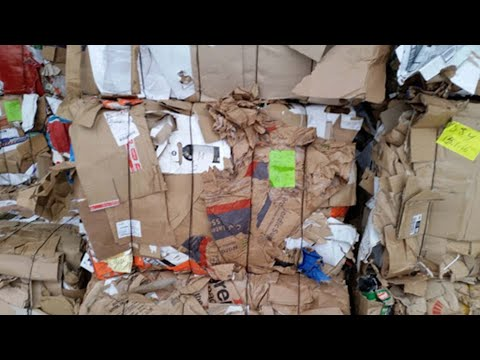 , title : 'How Much Do They Pay For A Bale Of Cardboard At A Recycling Company