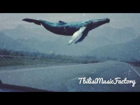 M Σ T Λ N O I Λ   Синий кит ✵ Музыка