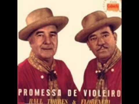 Música Boi Amarelinho