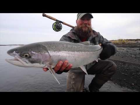 Alaska Steelhead Fishing Aleutian River  HD